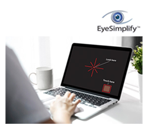 Web-based Visual Field Testing
